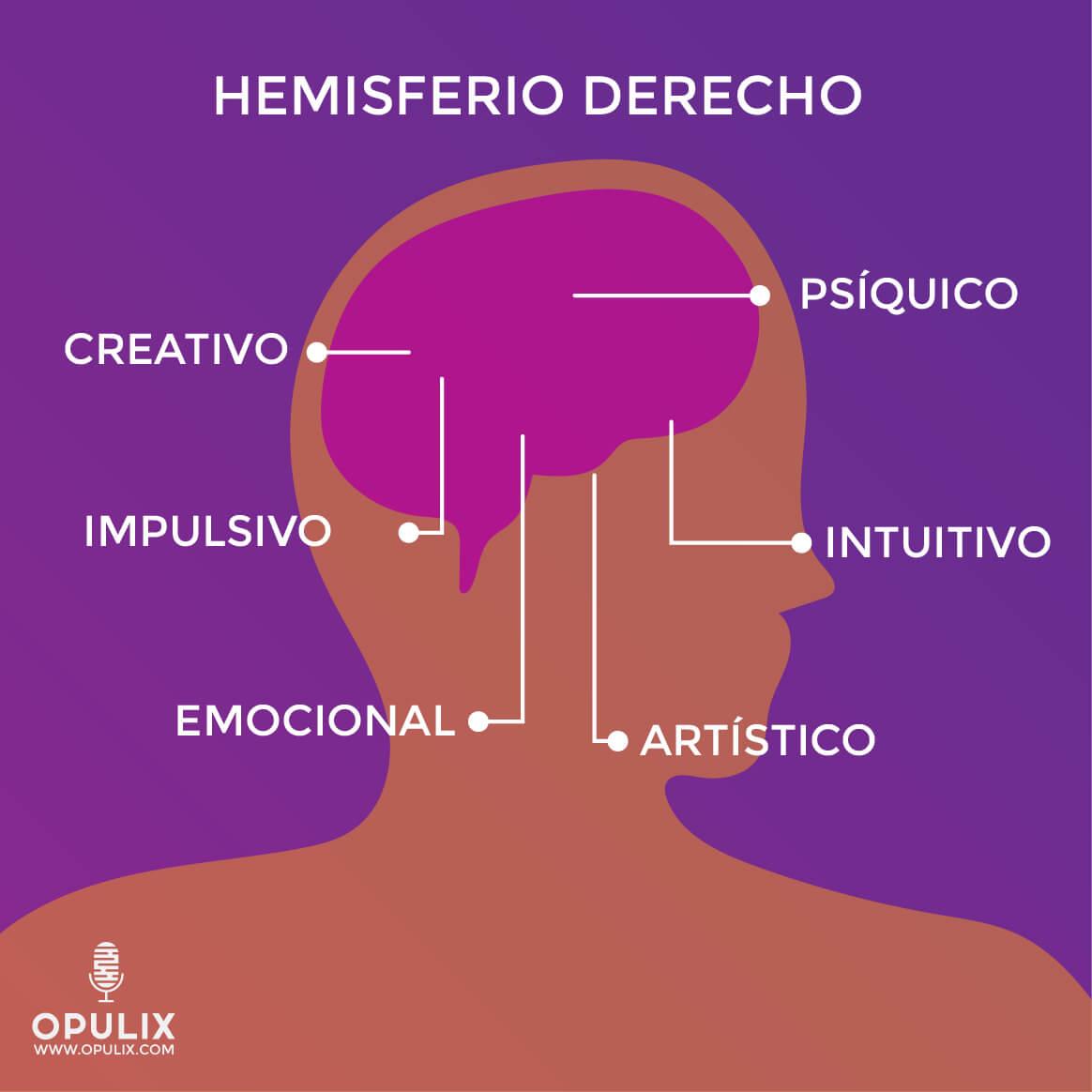 ¿Cuál hemisferio de tu cerebro usas más? - lado izquierdo vs. Lado derecho